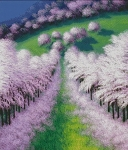 Pathway of Blossoms